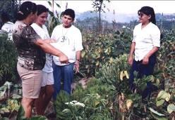 Projeto sobre plantas nativas em Pernambuco com a UFRPE e ASPTA